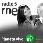 Bajan las emisiones de CO2 en 2018 (FEC) - Planeta Vivo, Radio 5 (RNE)