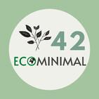 42. Orden y minimalismo
