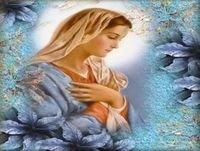 14. La Reina del Cielo en el Reino de la D.V llega al templo.