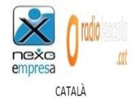 11/06/2015-NEXO EMPRESA-La Industria erótica 2ª Parte