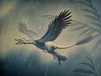 La Brújula de la Ciencia s04e32: Los dinosaurios, antepasados de las aves