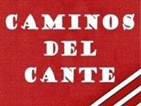 Nuestro archivo.- Dedicado al ciclo Cajasol: Juana la del Pipa (Solera de Jerez, 2009)