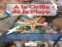 """ACL Radio. Proyecto """"A la orilla de la playa"""""""