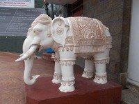 Cuento: El Gran Elefante Blanco