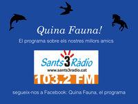 Quina Fauna! Leonardo Anselmi, llei dels Circs 04-10-15