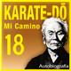 563 | Karate-Do, Mi camino 18x30 (días difíciles)