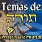 Aviv, año bíblico y más...