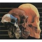 Análisis crítico de la teoría evolucionista