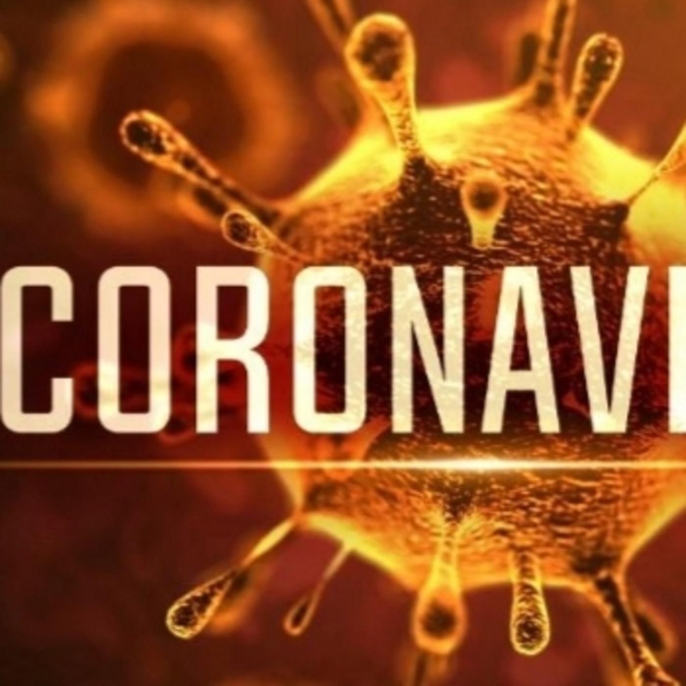 La revolución científica e idiomática del coronavirus o Covid - 19