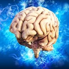 Filosofía y cerebro: El secreto de la memoria y los sesgos cognitivos