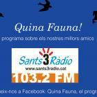 Quina Fauna! Pat Educadora Canina, 17-01-15