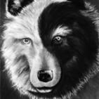 El lobo negro y el lobo blanco (cuento Cherokee)