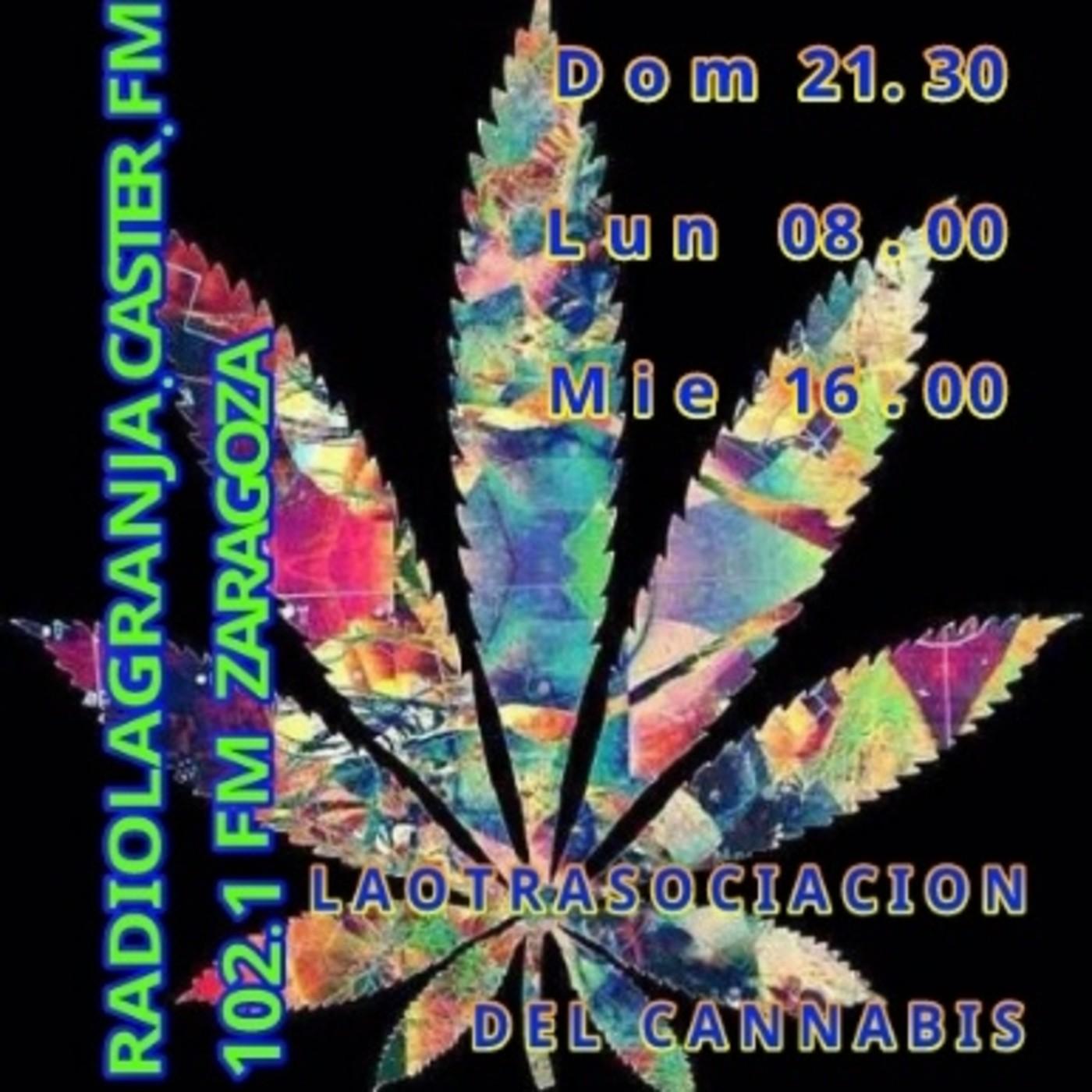 UndergrowTV 5 Especial Ferias cannábicas Ward 21