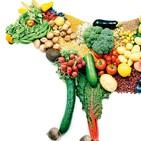 Episodio 36. ¿Es una buena opción ser vegetariano?