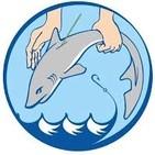 Un Mundo Feliz - Conservar Tiburones