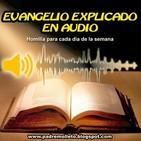 Evangelio explicado en audio homilía sábado semana I tiempo ordinario