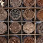 Tipos de suelos en el viñedo