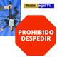 Prohibicion De Despedir | Limitacion ERTE | Medidas estado de alarma para mantenimiento del empleo