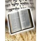 Evangelio de Juan caps 1.19 al 4