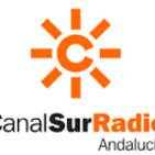 El equipo BCS de dragon boat del Club Piragüismo Triana, en Canal Sur Radio