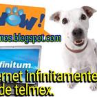 P178: comprando por tv y telmex se niega a reembolsar.