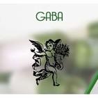 El Angel de tu Salud - GABA*