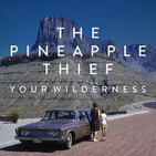 149 - Pineapple Thief - Your wilderness (2016)