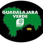 Guadalajara Verde. Programa 2 19/10/2020