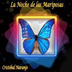 La Noche de las Mariposas (7 de Junio de 2016)