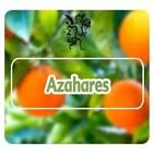 El Ángel de tu Salud - AZAHARES