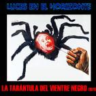 Luces en el Horizonte: LA TARÁNTULA DEL VIENTRE NEGRO (1971)