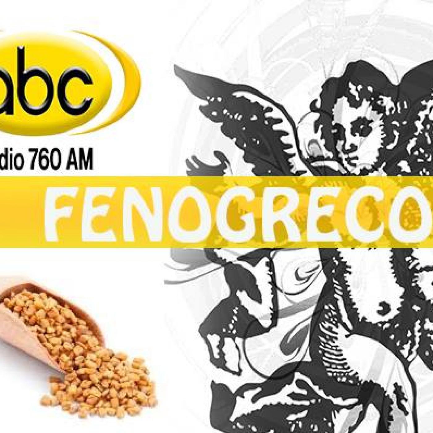 EL ÁNGEL DE TU SALUD- Rodrigo Mondragón - FENOGRECO
