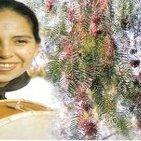 Mujeres de Puerto Almendro - MARIANA CARRIZO