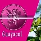 El Angel de tu Salud - GUAYACOL
