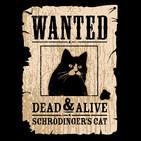 Aparici en Órbita s01e43: El gato de Schrödinger y las propiedades cuánticas, con José Luis Crespo