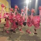Entrevista Esperanza Sánchez- primer premio concurso disfraces carnaval 2018-