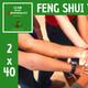 Feng Shui Vital