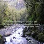 Visualización creativa: Lanzando al río los pensamientos nocivos