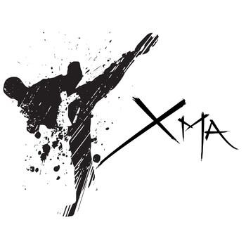 #11 La motivación en las artes marciales, el sistema de cinturones.