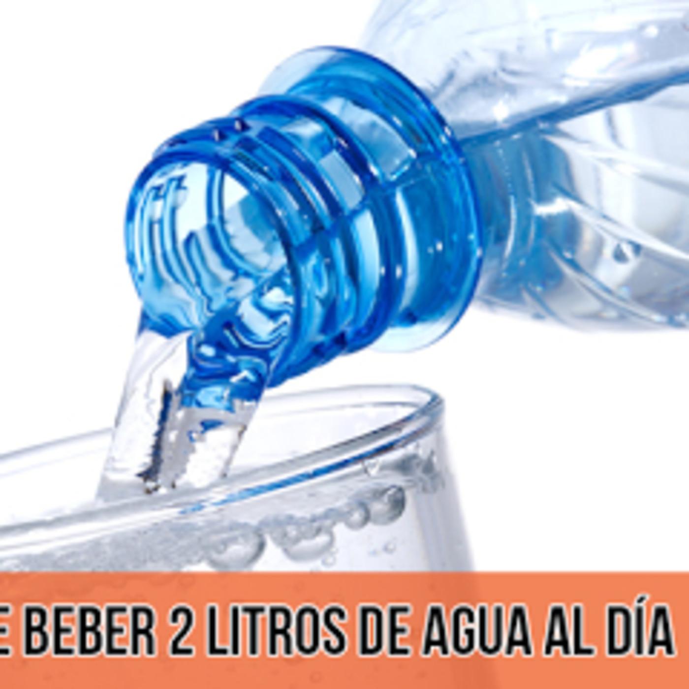 El Mito de Beber 2 Libros de Agua al Día - José María Puya