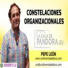 Conferencia: Constelaciones Organizacionales por Pepe León