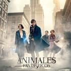 Review de Animales Fantásticos Y Dónde Encontrarlos (2016)