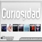 Curiosidad - ¿Quién creó el universo?