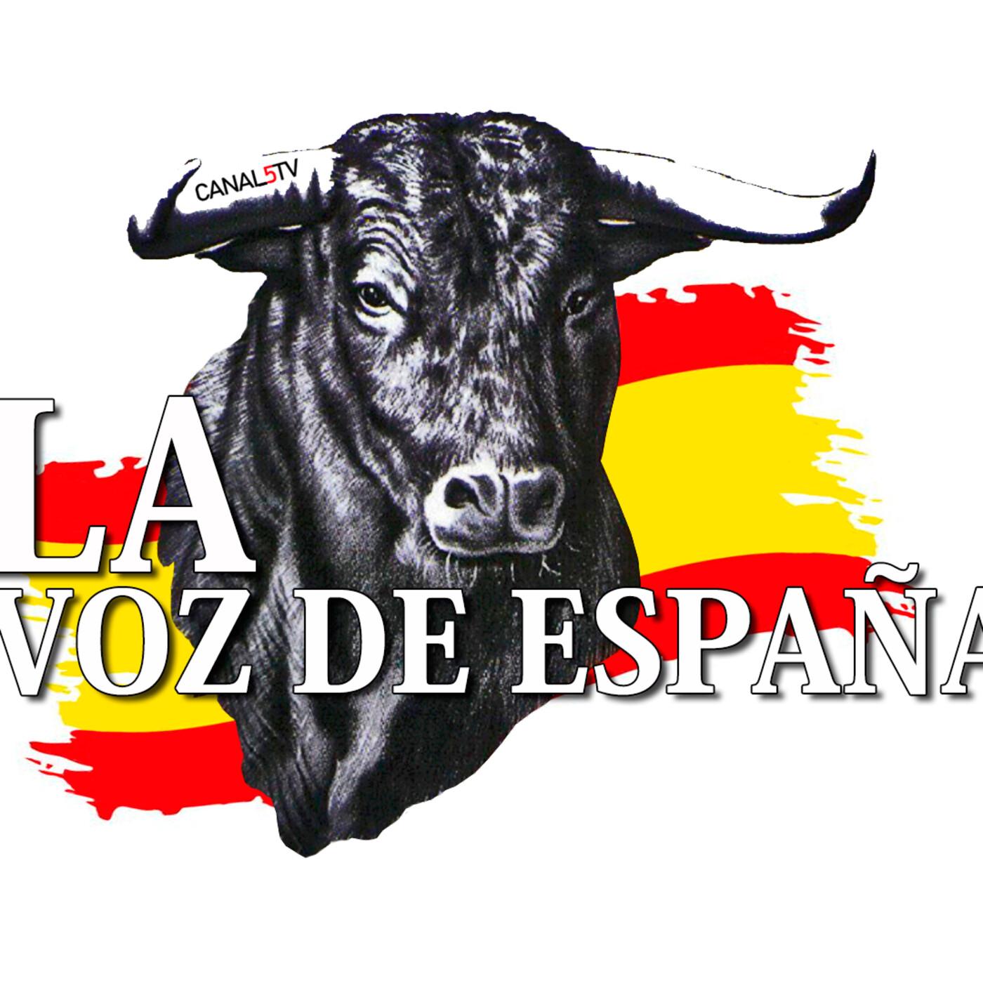 LA VOZ DE ESPAÑA Ed: 288 (04 de Octubre)