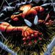 Spiderman Superior: Mi peor enemigo-El alma de Peter Parker sigue actuando