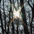 Luz, Dicha y Paz