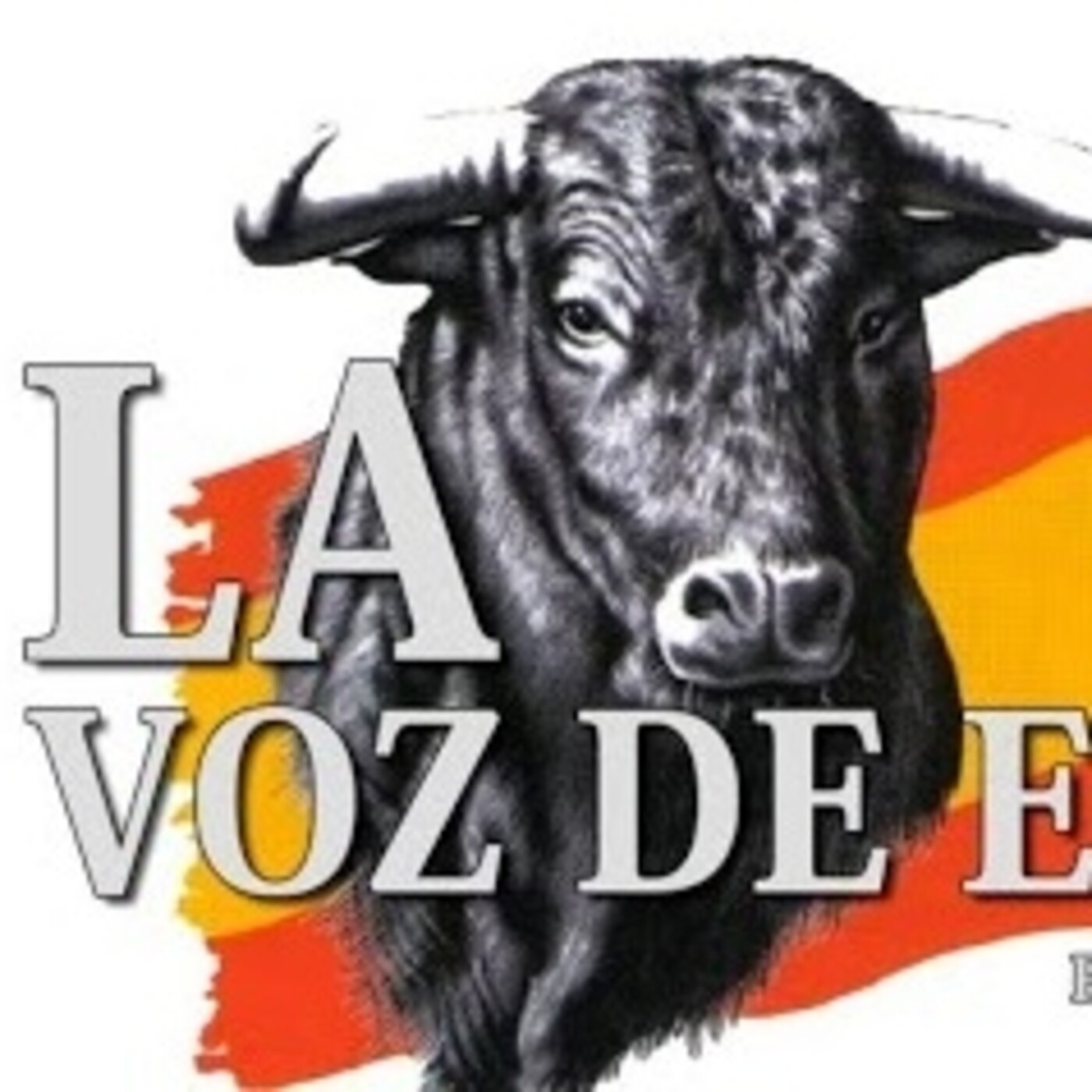 LA VOZ DE ESPAÑA Ed: 231 (19 de Mayo)