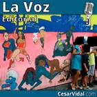 Editorial: Ideología de género: objetivo nuestros hijos - 09/11/18