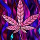 Especial Sentencias TRIBUNAL SUPREMO y América Medicinal. Marihuana Tv. RADIO DOCUDRAMA News 45