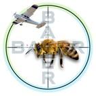 Muerte masiva de abejas